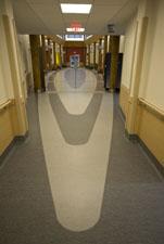 hallways shaped like a feather photo