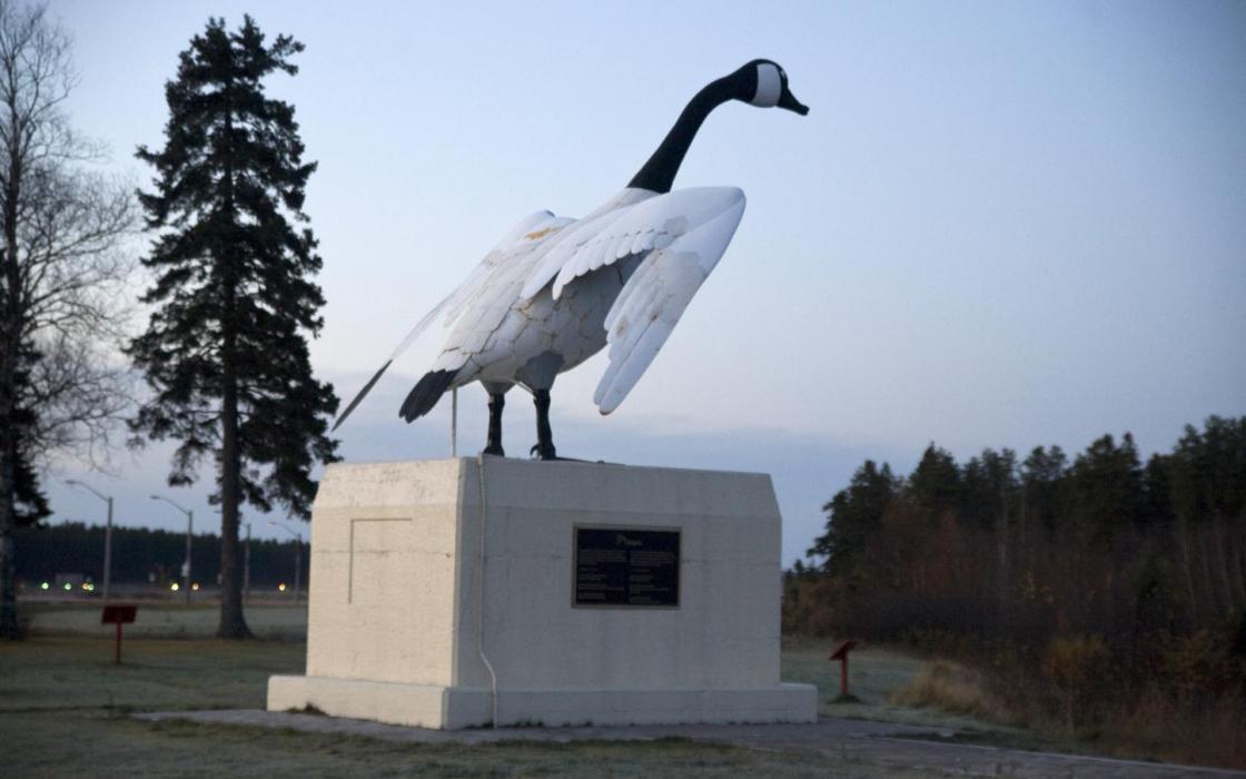 The famous Wawa Goose
