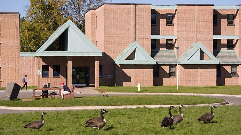 photo - student residence with Canada Geese
