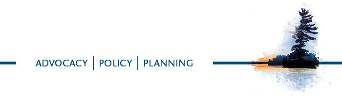 CPAL banner graphic - Advocacy, Policy, Planning